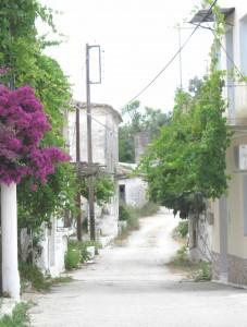 Old Petriti